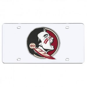 Florida State Mirrored License Plate
