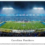 Carolina Panthers Panoramic Picture