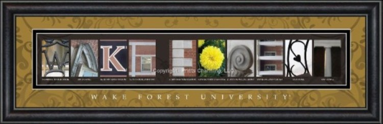 Wake Forest Campus letter art