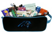 Panthers-travelcase-lg