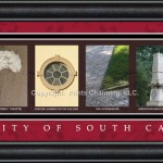 south carolina campus letter art