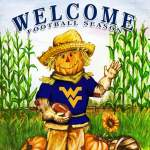West Virginia Mountaineers Fall Garden Flag