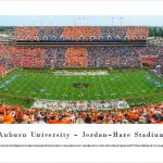 Auburn Tigers Football Panoramic Picture - Jordan-Hare Stadium