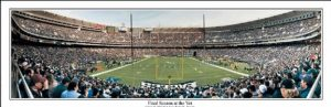 Philadelphia Eagles Veterans Stadium Panoramic Print